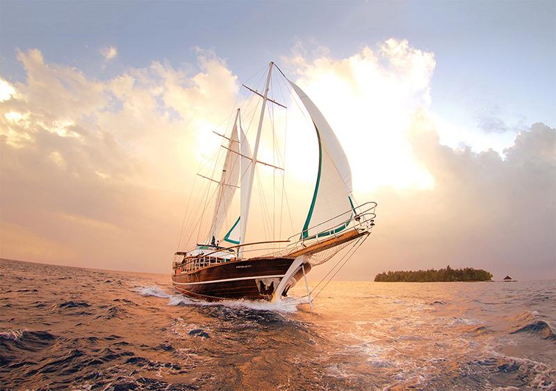 Thuận buồm xuôi gió là câu chúc xuất phát từ câu chuyện thực tế