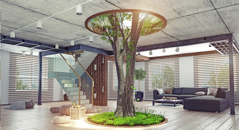 Mang mảng xanh vào nhà sẽ giúp không gian sống thoáng đạt và thoải mái hơn