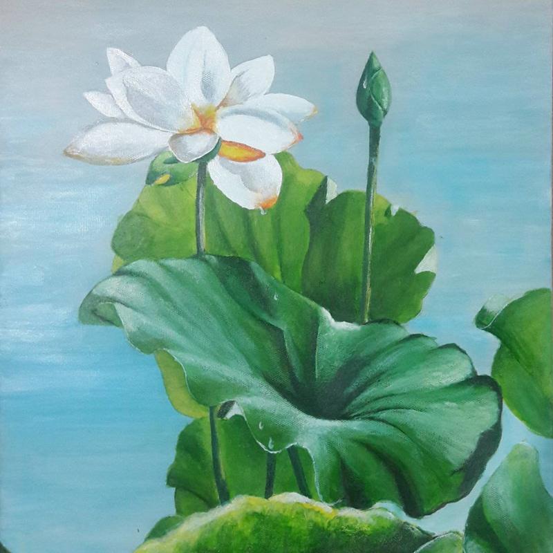 Tranh hoa sen là một quà tặng phong thủy được rất nhiều người ưa chuộng